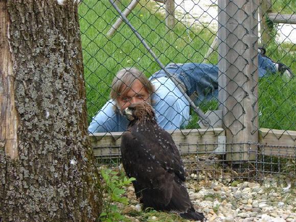 Dieser Falkner sollte den Adler bekommen
